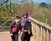 Broomhill Manor Riding Stables