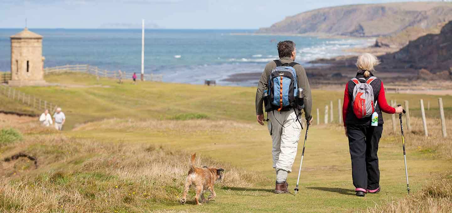 Dog walking on the coast path in Bude