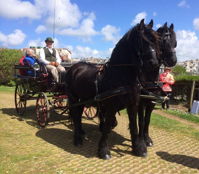Cornwall Carriage Hire Castle (Copy)